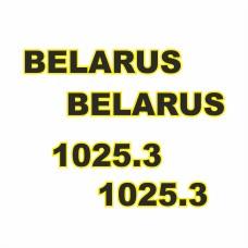 Комплект наклеек логотип эмблема BELARUS БЕЛАРУС 1025.3